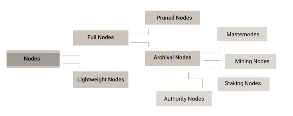Different types of nodes in blockchain.