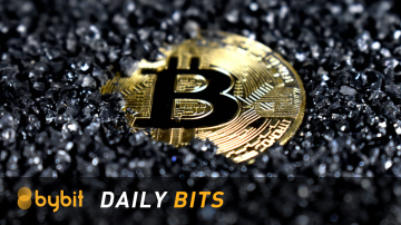 daily bits Bitcoin